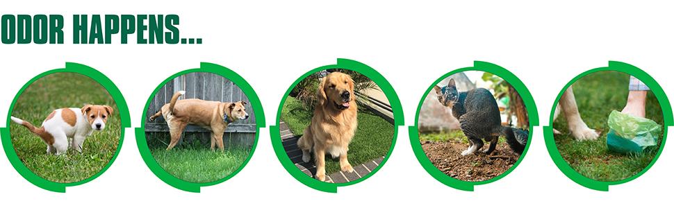 Odor happens. Simple Green Outdoor Odor Eliminator can help.