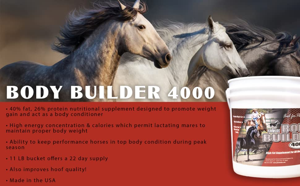 horse weight gain, body builder 4000, horse nutrition, horse supplement, horse product, pennwoods
