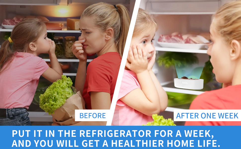 Ozone Refrigerator Deodorizer