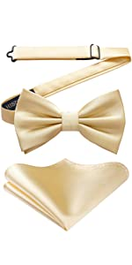 Champagne gold bow tie