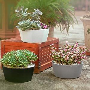plastic pot for plant planter