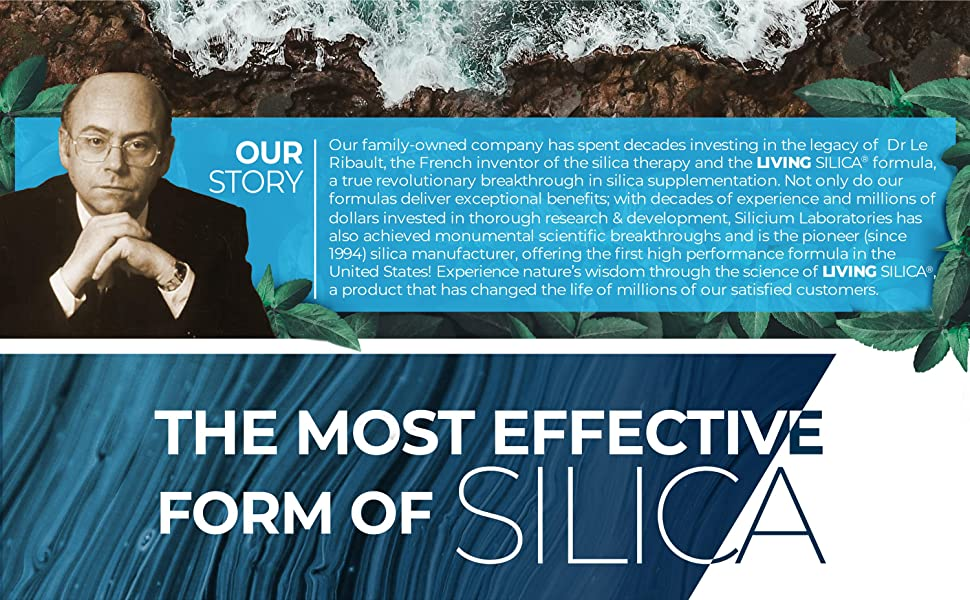 The Story of Living Silica