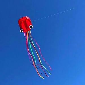 Rainbow kite and Octpus kite
