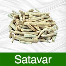 Satavar