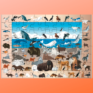Arctic animal inpuzzles for kids pc jigsaw pieces ages  ravensburger puzzle mudpuppy  Christmas