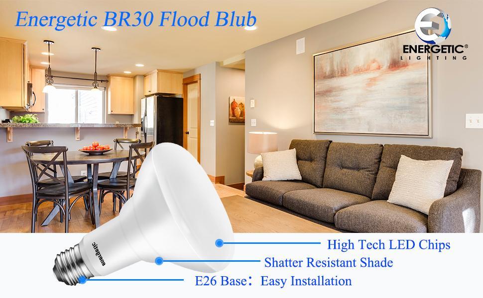 led indoor flood light bulb