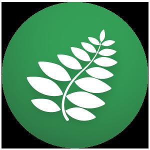 senna leaf natural stimulant laxative bowel movement efficient soft powerful constipation relief
