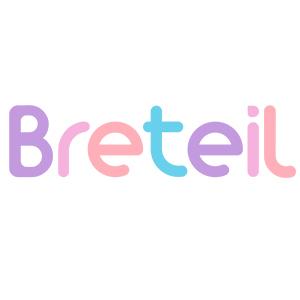 makeup breteil makeup brush set