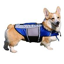 dog life jacket blue