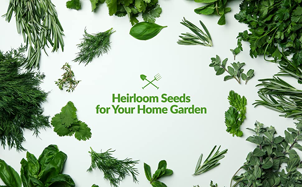 herb seeds for your home garden