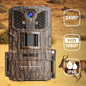 trail camera2
