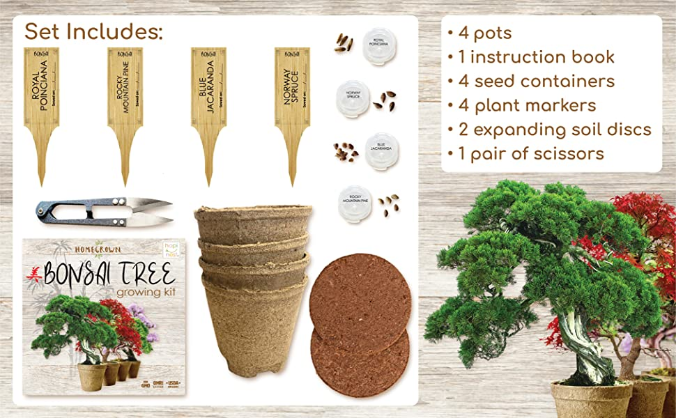 Unique Gardening And Hobbie Gifts For Adults Bonsai Tree Indoor Starter Kit 4 Bonsai Tree Seed Types Trees Plants Seeds Bulbs Rayvoltbike Com