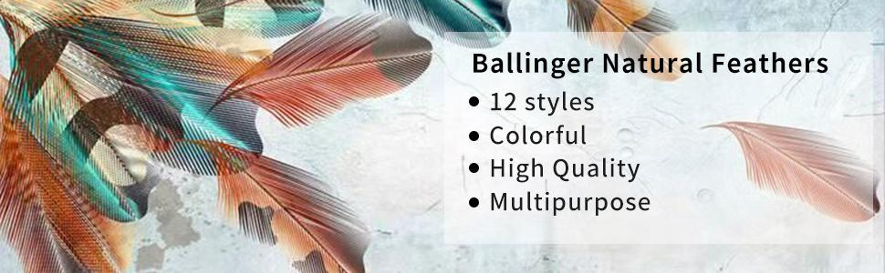 Ballinger Natural Feathers 12 styles Colorful High Quality Multipurpose