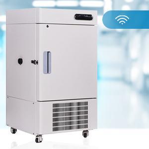 Low-High Temperature Alarm System