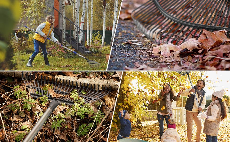 Collect debris, rakes for gardening, small rake