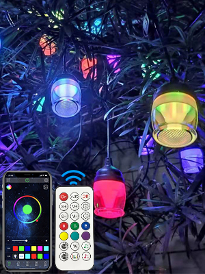 Indoor/Outdoor String Lights Dimmable LED String Lights for Year-around Use