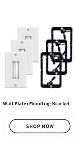 Brush Wall Plate