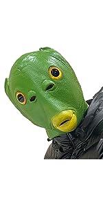 Green Fish Mask