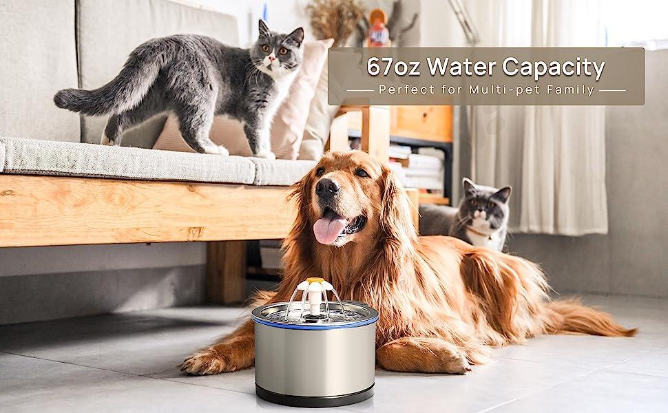 Stainless Steel cat water fountain Pet Fountain waterer water dish bowl feeder kitten auto