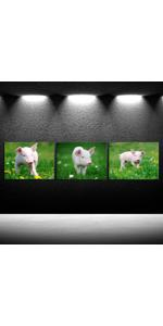 farm animals pictures pig pictures on canvas Cute Pink Piggy Nursery Canvas Art Baby Decor