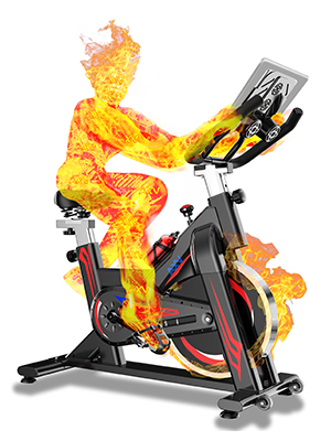 AXV Magnetic Stationary Indoor Exercise Bikes