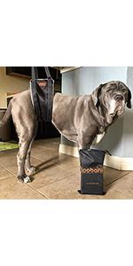 Dog Hardness Lift