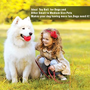 Ideal Toy Ball  for Dogs and Cat