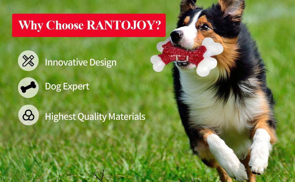 Dog Bone Chew Toy