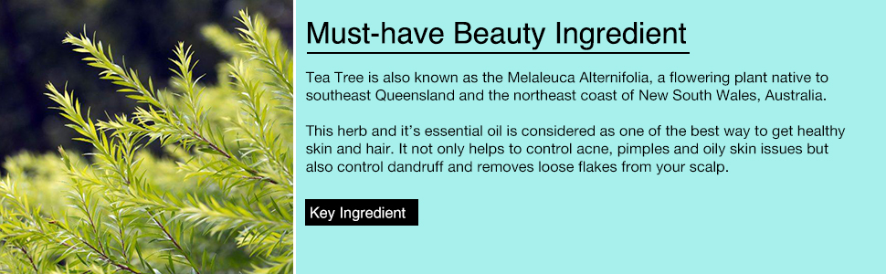 tea tree oil for skin and hair