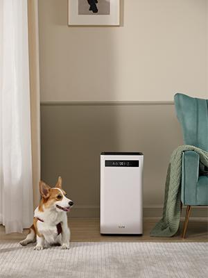 air purifier, large air purifier, best air purifier, bedroom air purifier