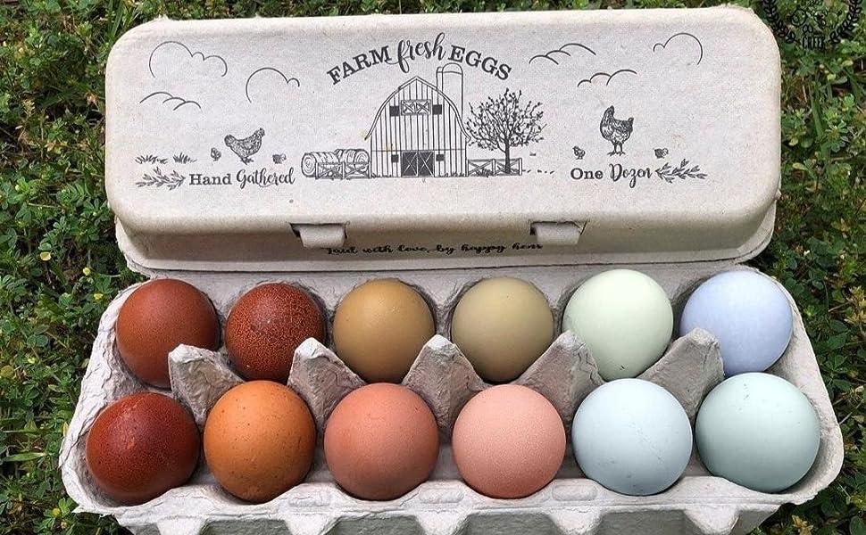 Barn Flat-top Vintage Design Egg Cartons