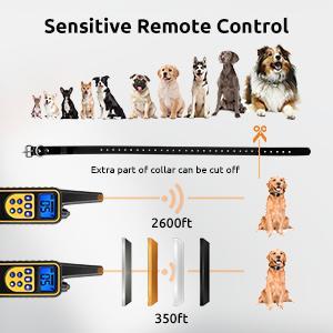 sensitive remote control