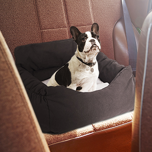 Dog Car Booster Seat Dog Car Seat Summer Pet Car Seat for Large Dog or Multiple Small Dogs