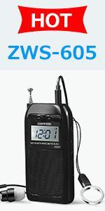 ZHIWHIS ZWS-605 Portable MP3 Radio