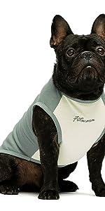 dog shirt vest green