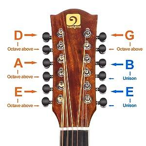 guitar twelve