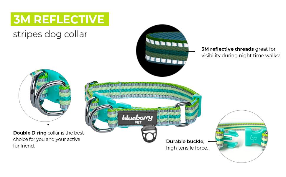 multi-colored stripe collection - 3
