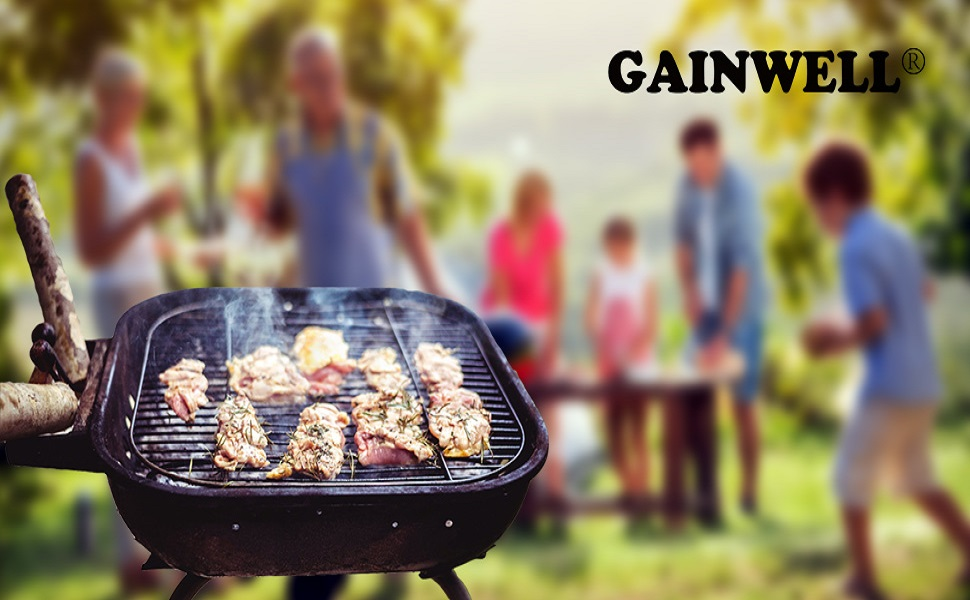 GAINWELL BBQ GRILL BRUSH