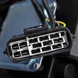 main plug