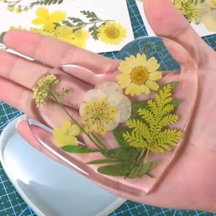 DROLE dried flowers for resin