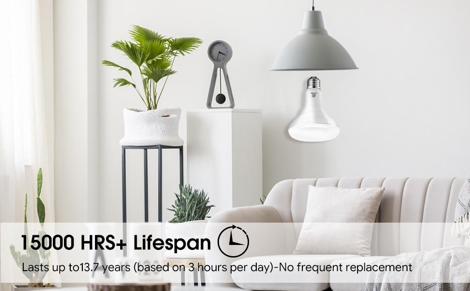 led br30 light bulbs indoor