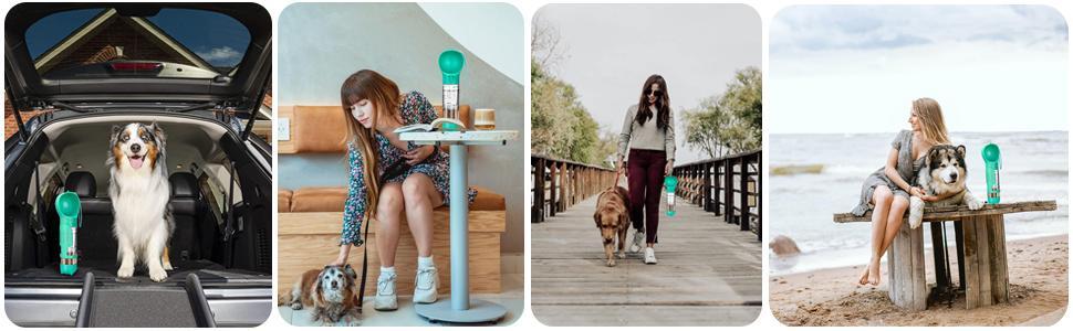 dog water dispenser