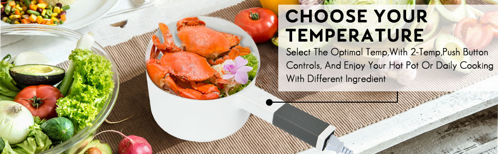 electric hot pot can be used for traditional fondue cooking