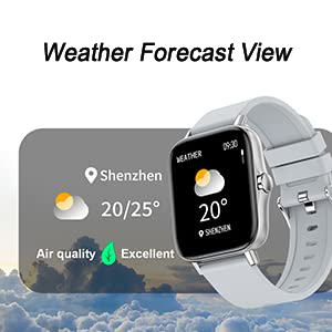 Weather Forecaset View