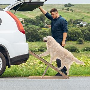 mount the ramp for dogs large size car pet cat ramps