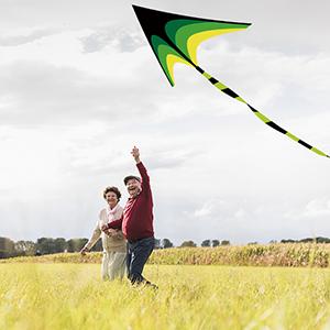 Classic Delta Kite