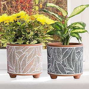 Premium Ceramic Planter Pot Set