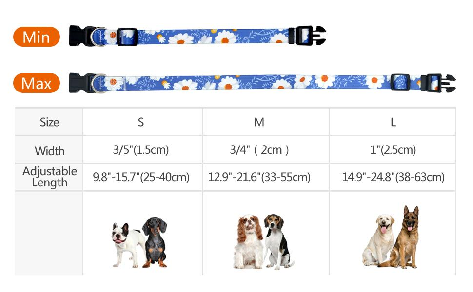 Size options, s for small dog, M for medium dog, L for large dog