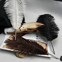 Ostrich Feathers for DIY Craft