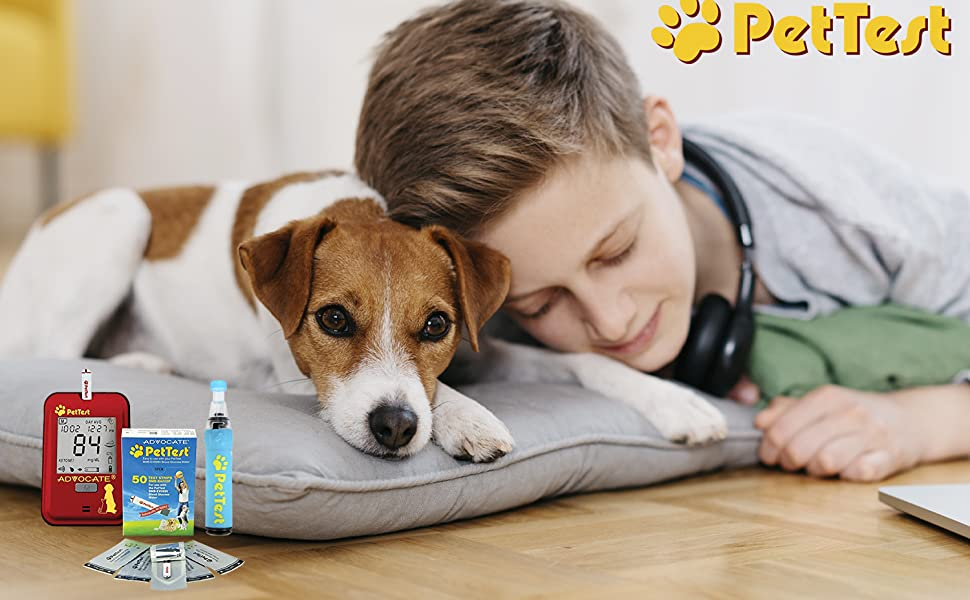 Blood Glucose test strips genteel lancing device painless painfree for diabetic dogs and cats